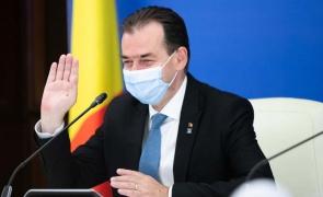 """Ciolaniada galbenă"" stil Orban-Alexe"